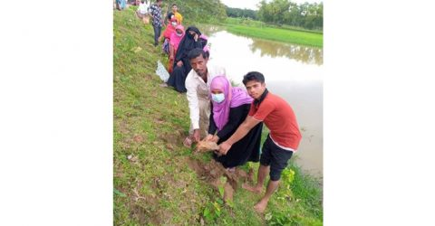 কলমাকান্দায় গ্রাম উন্নয়ন কমিটির তাল বীজ রোপন